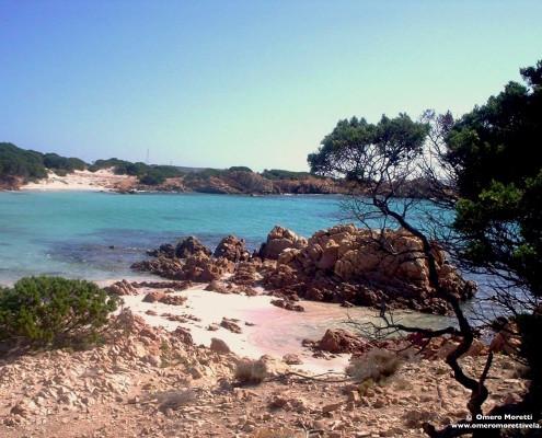 vacanze in barca a vela sardegna Spiaggia rosa a Budelli