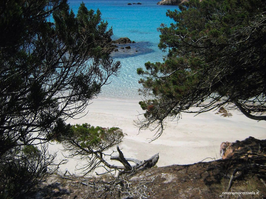vacanze in barca a vela in Sardegna e Corsica spiaggia tra gli alberi