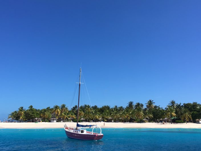 inverno ai caraibi barca a vela palm island